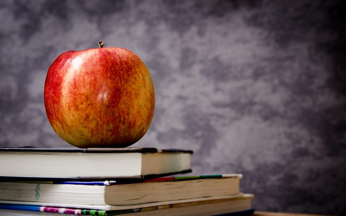 lifelong learning: more than a cliche