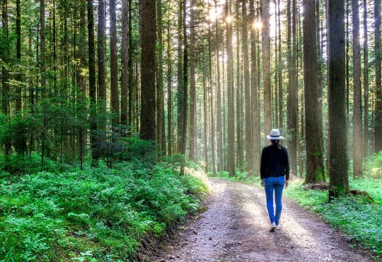 My journey into career development: Finding my path to help others follow theirs