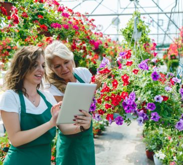 two women working in a garden centre