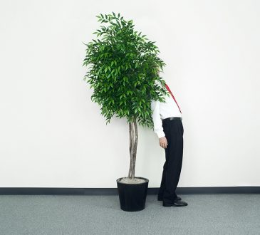 man hiding behind office plant