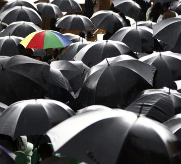 a colourful umbrella in a sea of black umbrellas