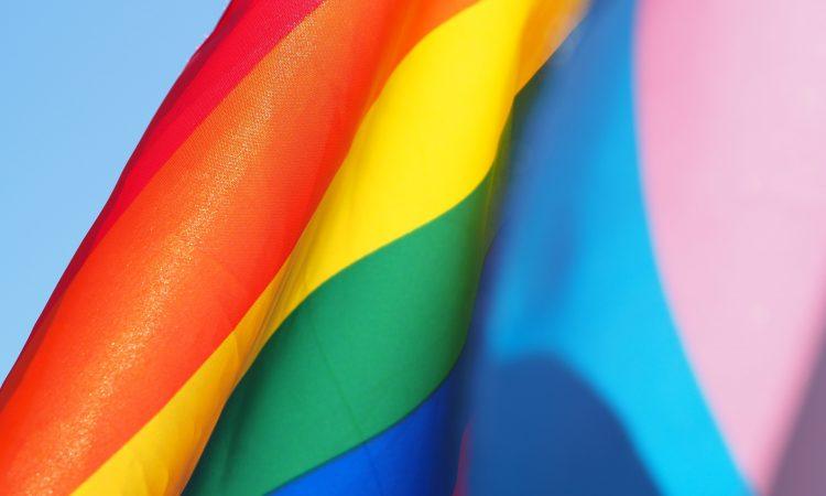 pride and transgender pride flags