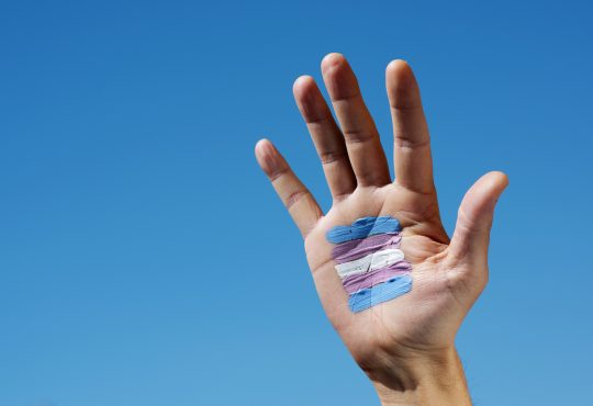 closeup of a transgender flag painted in the palm of the hand of a young caucasian person, against the blue sky
