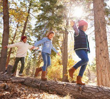 three kids balancing on fallen tree in forest