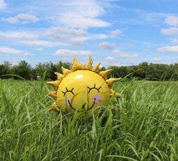 smiling sun-shaped ballon in grass