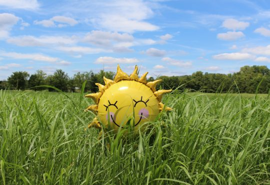 smiling sun-shaped ballon in grass