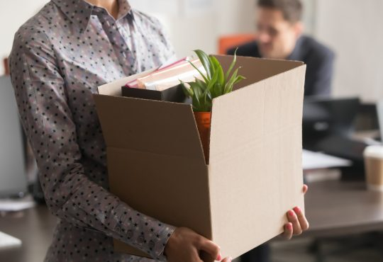 Close up view of new female employee intern holding cardboard box with belongings start finish job in company office, busnesswoman newcomer worker get hired fired on first last day at work concept