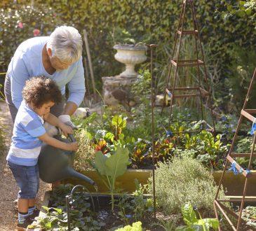 grandmother and grandson gardening together