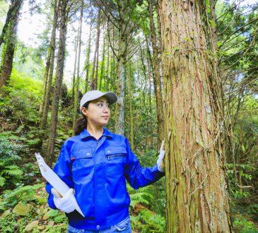 Women wearing blue work jumpsuit in forest.